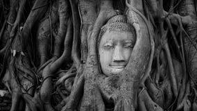 Tête de grès Bouddha chez la Thaïlande Photographie stock libre de droits