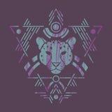 Tête de léopard dans le cadre Images libres de droits