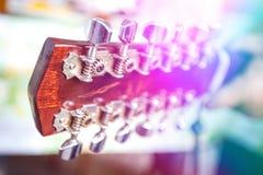 Tête de la douze-guitare Photo libre de droits