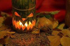 Tête de lanterne de potiron de Halloween et feuilles d'automne Photographie stock libre de droits