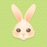 Tête de lapin Photo stock