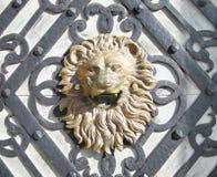 Tête de lion Photographie stock libre de droits