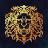 Tête de lion Illustration d'isolement de vecteur Images stock