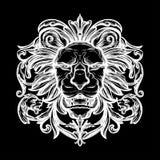 Tête de lion Illustration d'isolement de vecteur Photographie stock