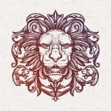 Tête de lion Illustration de vecteur Photographie stock