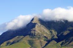 Tête de lions de Capetown Image libre de droits
