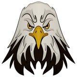 Tête de mascotte d'un aigle Photo libre de droits