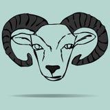 Tête de mascotte de RAM sur un fond coloré Images stock