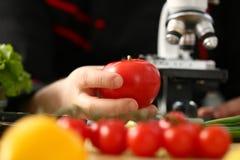 Tête de microscope sur le fond de cuisine photo libre de droits