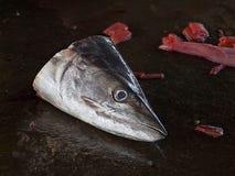Tête de poissons rejetés Photographie stock