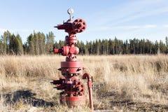 Tête de puits de gaz naturel d'Abandonded photographie stock