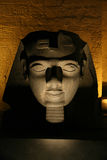 Tête de Ramses la nuit Photographie stock libre de droits