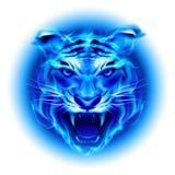 Tête de tigre bleu du feu. illustration stock