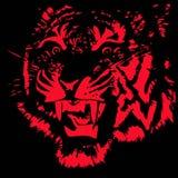 Tête de tigre effrayant Photographie stock libre de droits