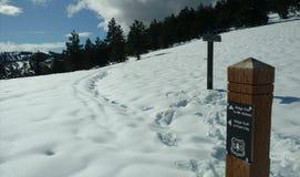 Tête de traînée à Ridge Trail image libre de droits