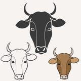 Tête de vache Photos libres de droits