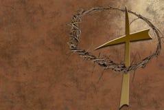Tête des épines Image libre de droits