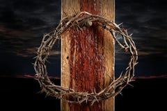 Tête des épines sur la croix Photo stock