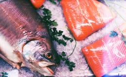 Tête des poissons savoureux morts sur la glace Image libre de droits