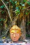 Tête du Bouddha dans le temple de Wat Photivihan Malaysia Photo stock