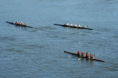 Tête du Regatta d'aviron de Hooch Photos stock