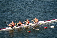 Tête du Regatta d'aviron de Hooch Image libre de droits