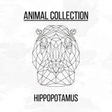 Tête géométrique d'hippopotame Image stock