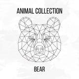 Tête géométrique d'ours Photographie stock libre de droits