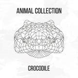Tête géométrique de crocodile Image libre de droits