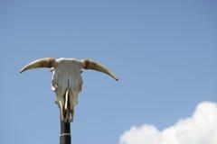 Tête indienne de poteau de totem d'un crâne de taureau avec le klaxon deux Images libres de droits