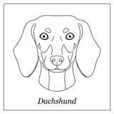 Tête noire d'isolement d'ensemble de teckel sur le fond blanc Ligne portrait de chien de race de bande dessinée illustration de vecteur