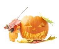 tête orange de potiron de Jack-o'-lanternes d'isolement Photos libres de droits
