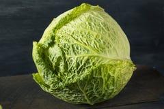 Tête organique crue de chou de Milan Images stock