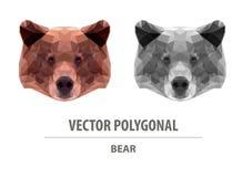 Tête polygonale d'ours de couleur de vecteur illustration stock