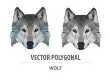Tête polygonale de loup de couleur de vecteur illustration stock
