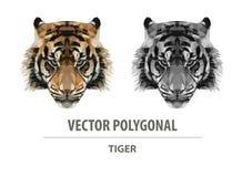 Tête polygonale de tigre de couleur de vecteur illustration stock