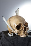 Tête squelettique de Halloween dans la cérémonie foncée Images stock