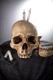 Tête squelettique de Halloween dans la cérémonie foncée Image stock