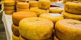 Têtes de fromage à vendre photo libre de droits