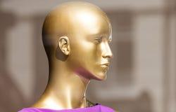 Têtes de mannequin Images stock