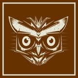 Têtes grunges d'oiseau de hibou de stylevector illustration de vecteur