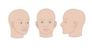 Têtes humaines plein-visage, moitié-visage et de trois quarts Silho de vecteur Photos libres de droits