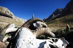 Tíbet Foto de archivo libre de regalías