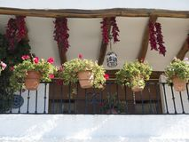 Típica terraza de Andalucía. Typical terrace of Andalusia, Spain, where red peppers are dried in the sun Royalty Free Stock Image