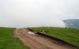 Título da estrada de terra na névoa fotos de stock royalty free