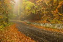 Título da estrada na névoa Fotografia de Stock