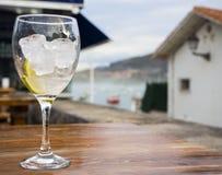 Tónico de la bebida Imagen de archivo libre de regalías