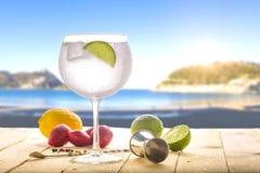Tónico de la ginebra en la playa foto de archivo