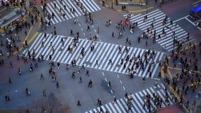 Tóquio de Shibuya do tráfego pedestre da cidade video estoque