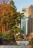 Tóquio entre a tradição e a modernidade fotos de stock royalty free
